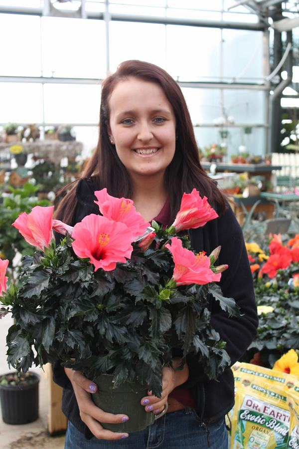 Katlynn With Tropical Hibiscus