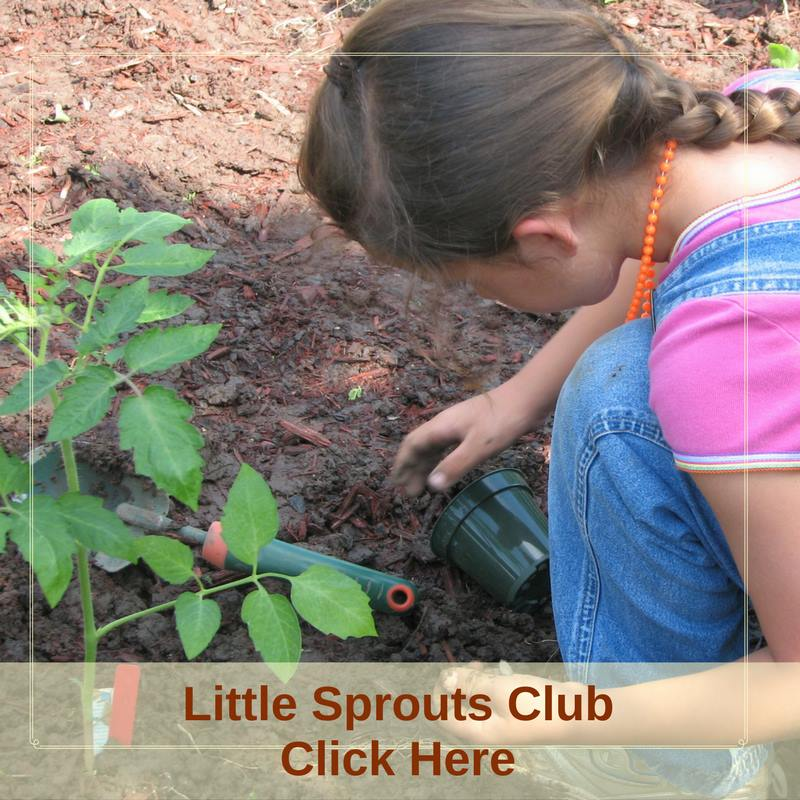 Little Sprouts Club